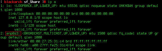 图 3 网卡 enp0s3 未获取到 IP 地址